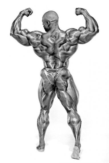 Ronnie Coleman (Ронни Колеман) — двойной бицепс сзади