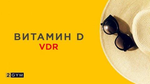 Причины дефицита витамина D и что такое VDR