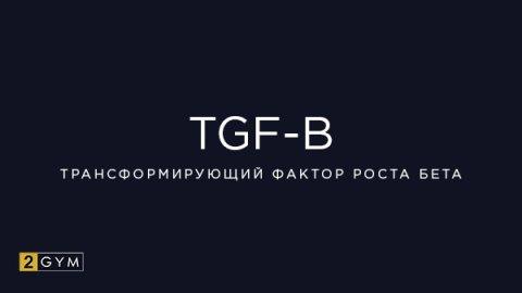 Трансформирующий фактор роста бета (TGF-β, TGF-beta)